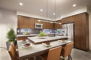 Recessed lights are modern dining room lighting options which are placed within hollow openings in the ceiling, they are small, round ambient lights consisting of a bulb, a decorative circular enclosure called the trim, and housing for electrical connections.